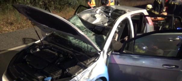 2015.09.10. szarvas baleset