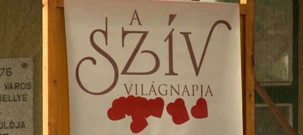 2015.09.28. sziv vilagnapjasziv vilagnapja
