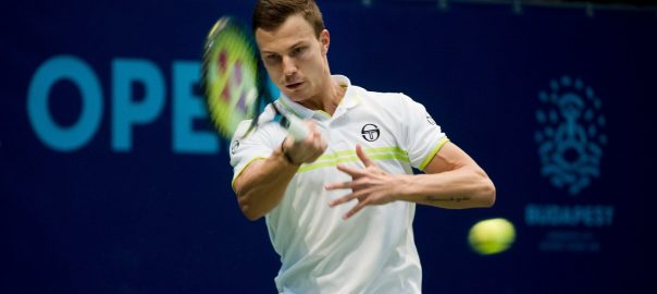 fucsovics-marton-tenisz