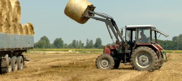 A fokozott vizsgálatra azért van szükség, mert a munkabalesetek csaknem ötöde a mezőgazdaságban történik.