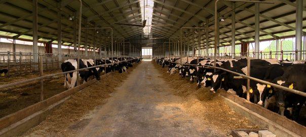 Szinte egyik európai uniós agrárminiszter sem szeretné, hogy csökkenjenek a gazdáknak jutó költségvetési források, közölte Nagy István agrárminiszter.