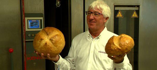 kenyer pekszov