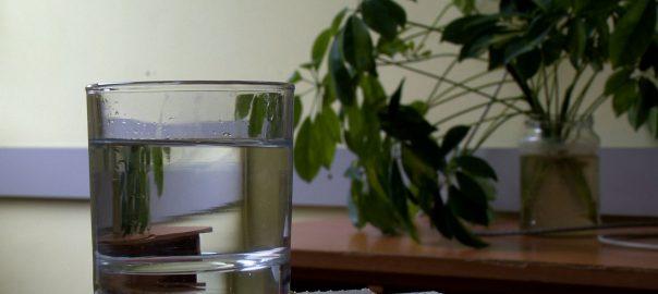 vizfogyasztas