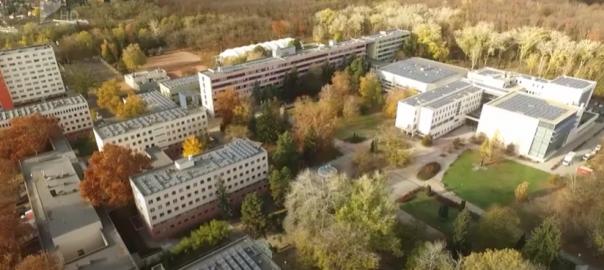 nyari egyetem
