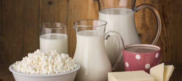 hazai tejtermeles